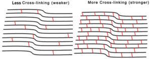 Less Cross-linking vs More Cross-linking